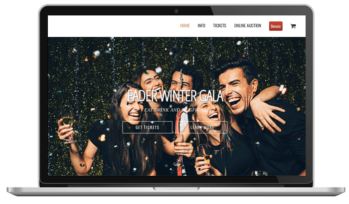 Cause Events-Eader Winter Gala Branded Website